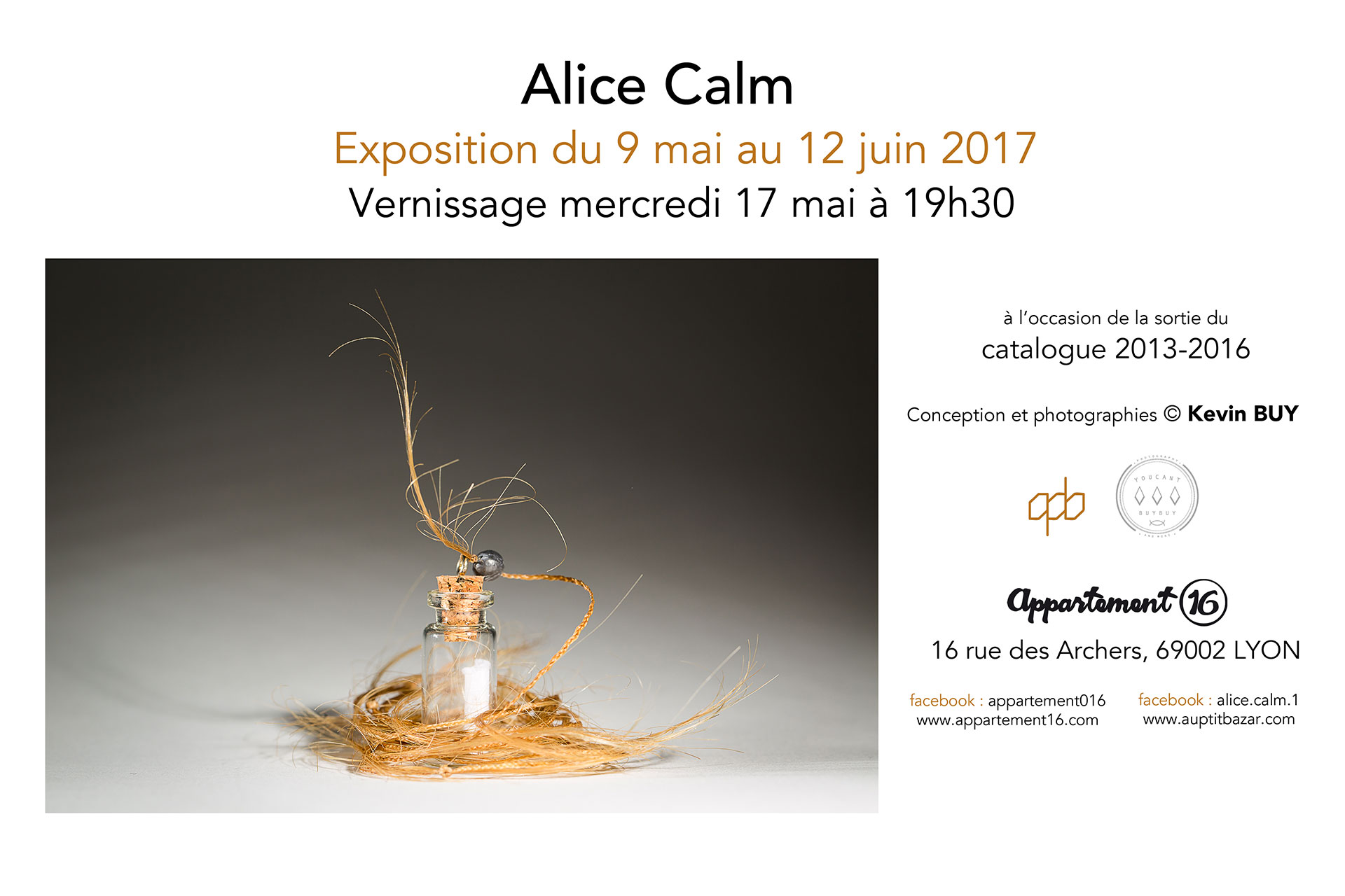 Exposition appartement 16 - Alice Calm